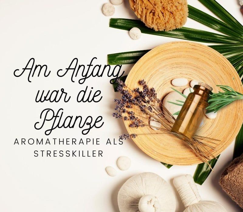 Aromatherapie: Mit allen Sinnen genießen