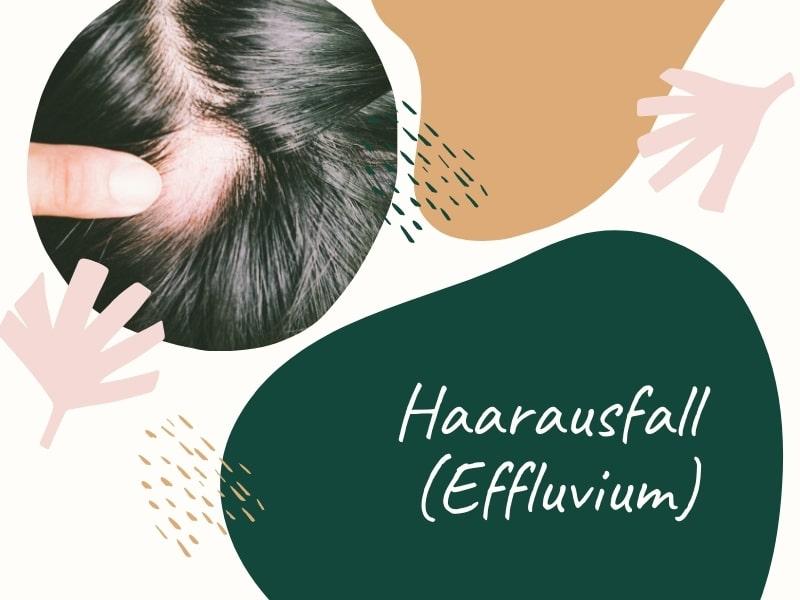 Haarausfall (Effluvium) – Wenn das Haarwachstum gestört ist