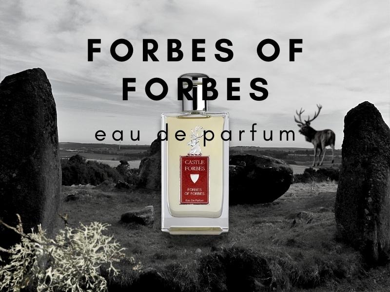 Castle Forbes Scotland – Im grünen Steinkreis von Cothiemuir Wood