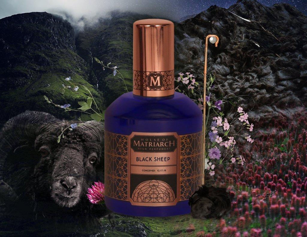 © House of MATRIARCH BLACK SHEEP - in Traubengeist destillierte Costus-Komposition